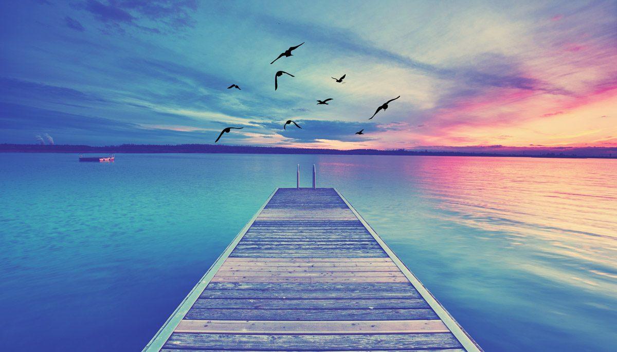 Background Ocean Dock Birds Home Slider2 Discover Healing