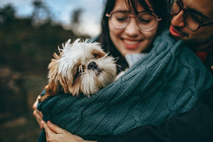 Can my pet benefit from energy work?